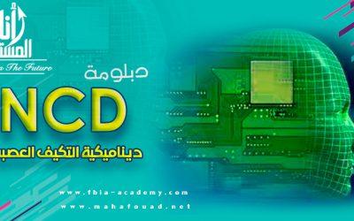 ديناميكية التكيف العصبي (NCD)